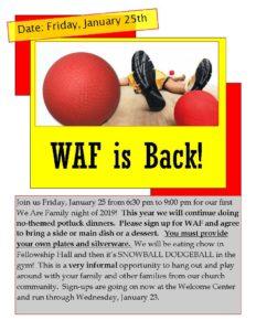 WAF 1/2019: Snowball Dodgeball